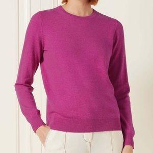 🔥NEW!🔥Fuchsia Cashmere Sweater Charter Club